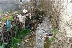 چرخه معیوب در جمع آوری زباله توسط تلاشگران عرصه محیط زیست