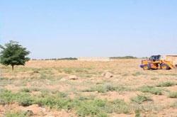 محوطه تاریخی –فرهنگی تپه دلقند ساماندهی میشود