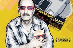 فیلم مستند «راننده و روباه» به نمایش درمیآید